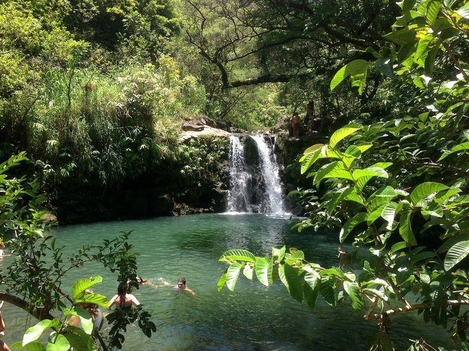 緑と水の宝庫!魅力が盛りだくさんのハナ・ハイウェイ
