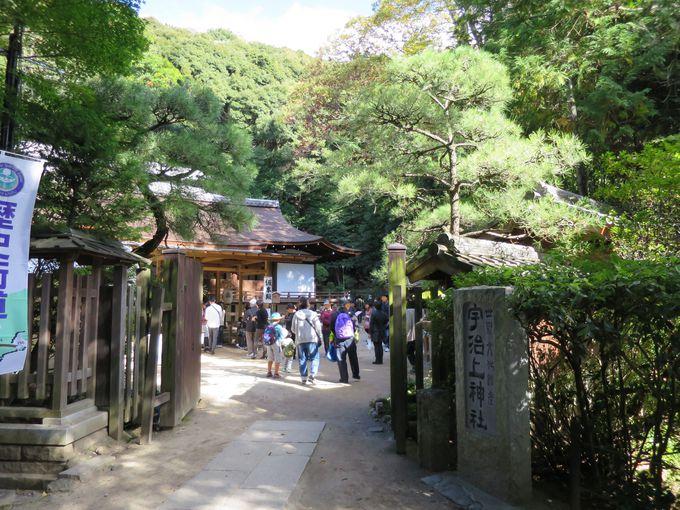 2.宇治上神社