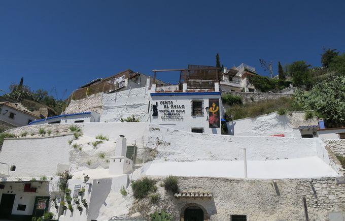 2)サクロモンテと洞窟住居ツアー:サクロモンテはフラメンコ発祥の地