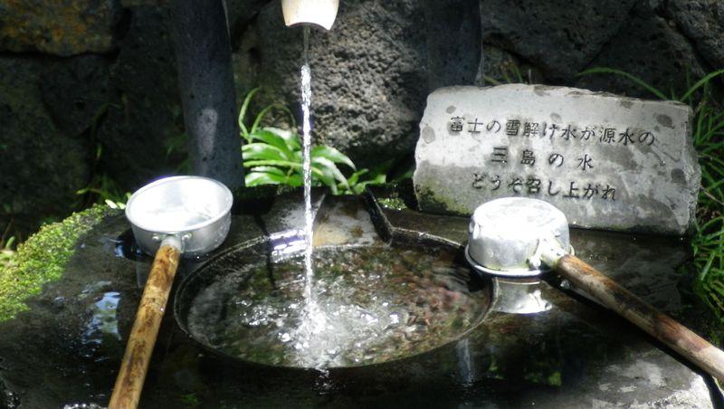 「水の都」三島で富士の雪解け水を堪能!オススメ散策コース