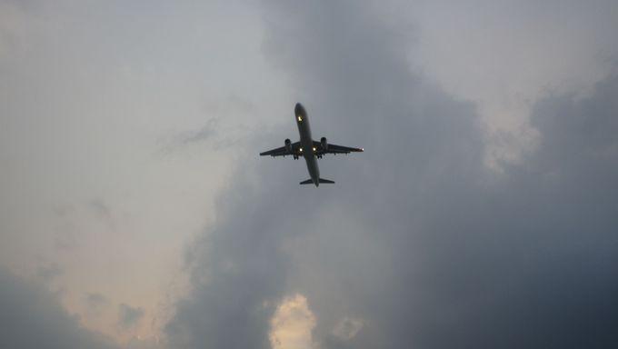 飛行機が間近で見られる!