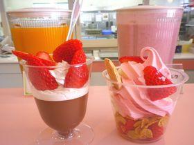 静岡・三島「伊豆フルーツパーク」で旬のフルーツ&名産三昧!|静岡県|トラベルjp<たびねす>