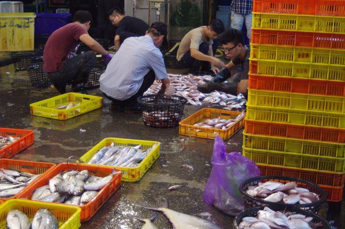 台南・安平地域と魚市場