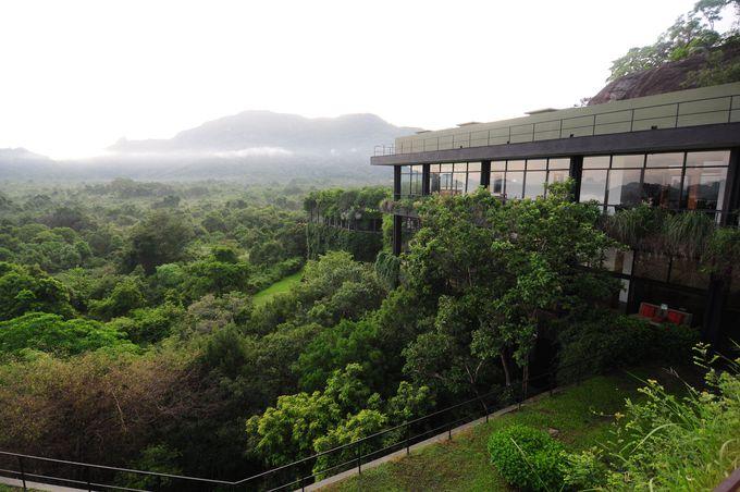 スリランカで最も泊まりたいホテルのひとつ「ヘリタンス カンダラマ」