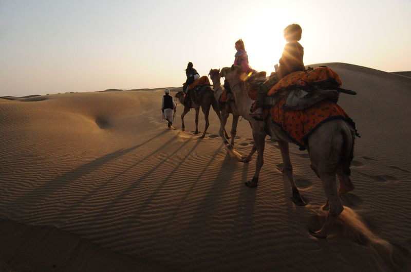 インドの砂漠でキャンプ!ジャイサルメールのキャメルサファリ