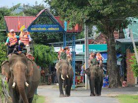 ネイチャートリップに一押し!ベトナム中南部「バンメトート」