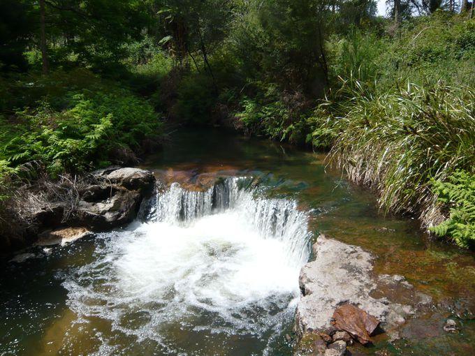 森の中の川温泉「ケロセンクリーク」