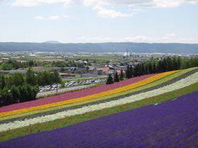 北海道記事画像3