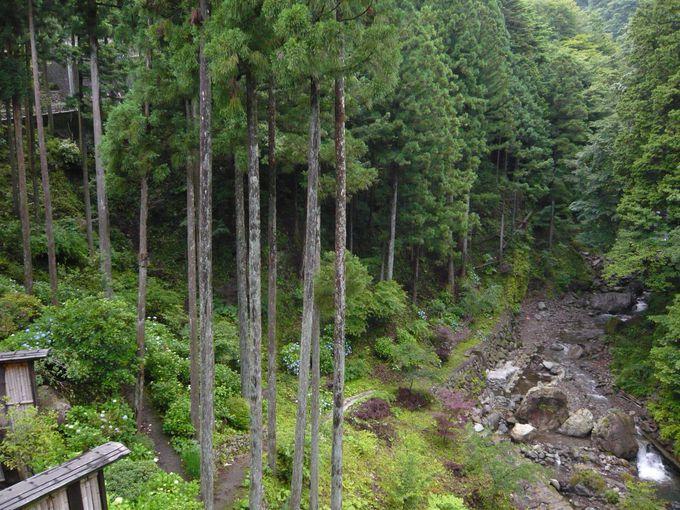 秋川渓谷を眺めながら入る温泉