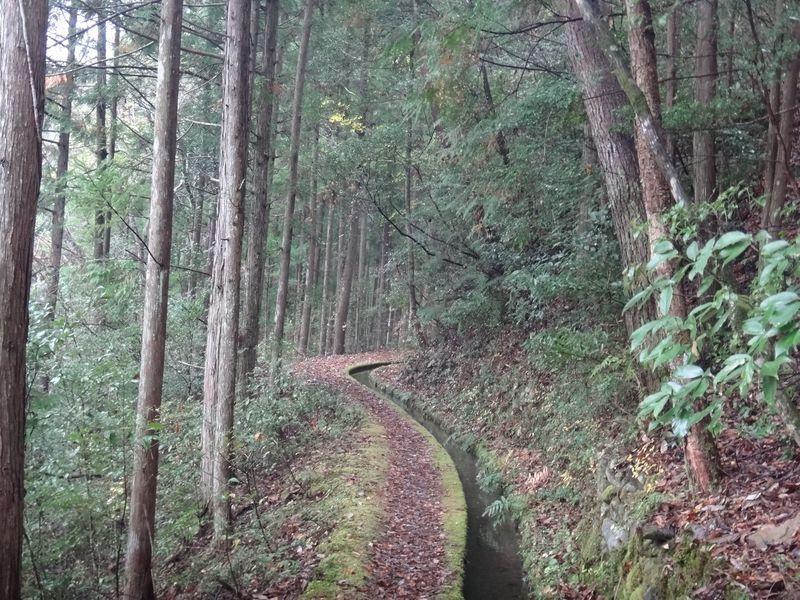 水と共に歩む高知県梼原町の久保谷セラピーロードで癒され散歩