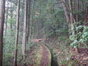 水と共に歩む高知県梼原町の久保谷セラピーロードで癒され散歩|高知県|トラベルjp<たびねす>