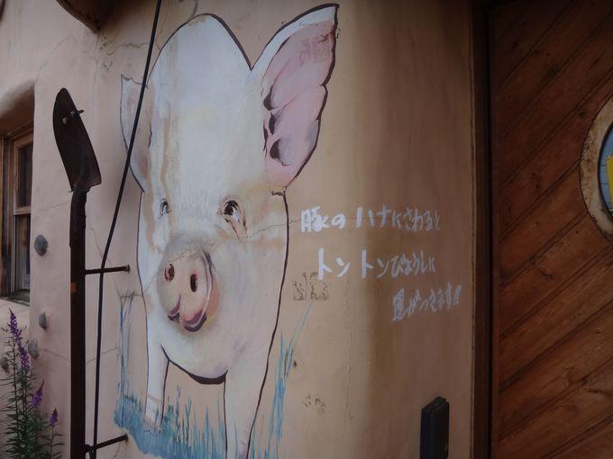 運気向上してくれる!?かわいい豚さん