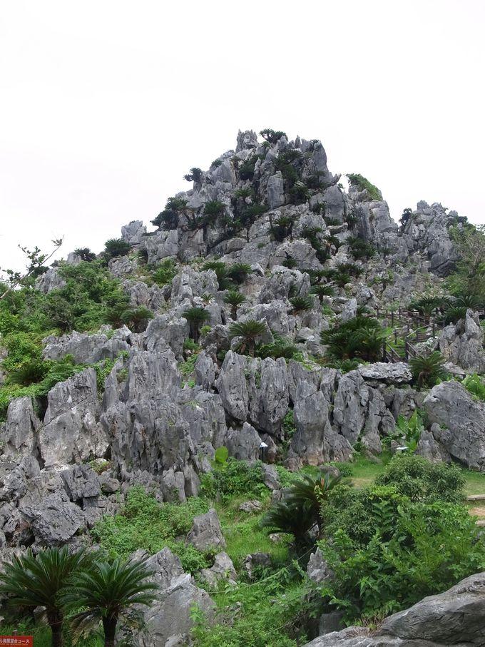 奇岩・怪石には面白い名前が!