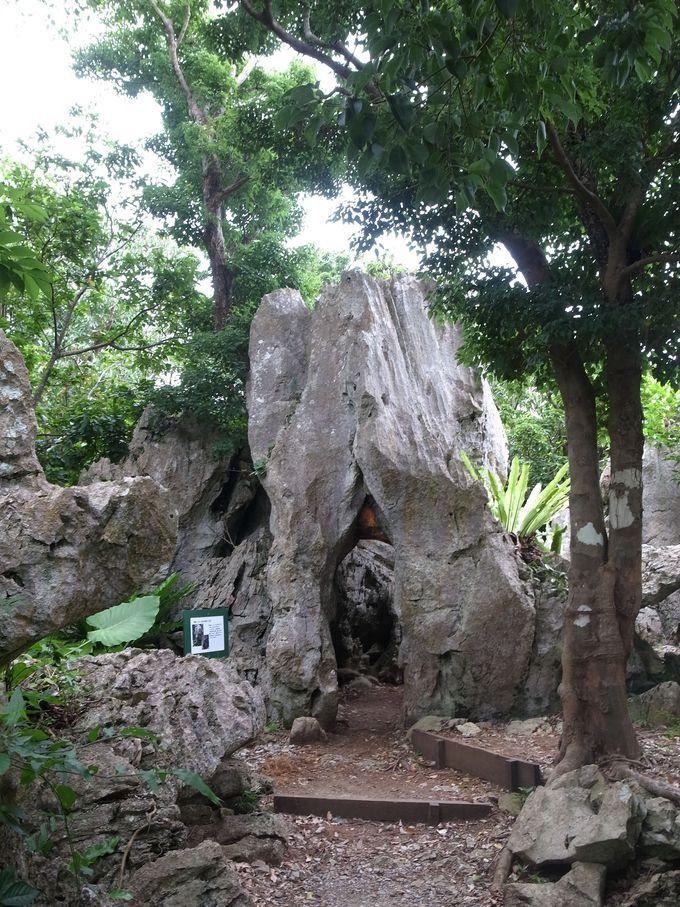 パワーをもらえる不思議な形の岩も!