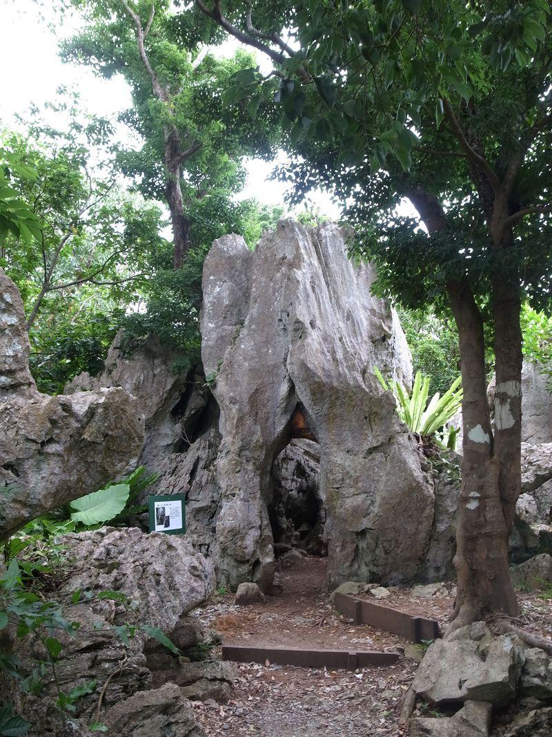沖縄本島最北!亜熱帯の森と奇岩のパワースポット・大石林山