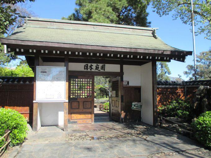 愛される日本文化の発信地