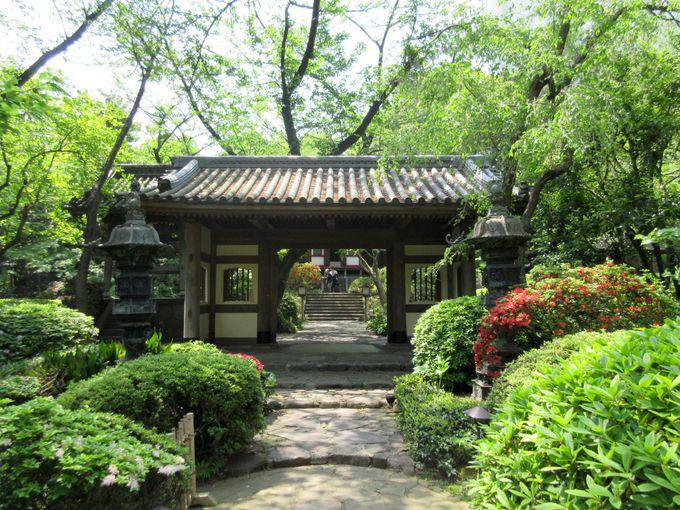本格的な日本庭園に癒される