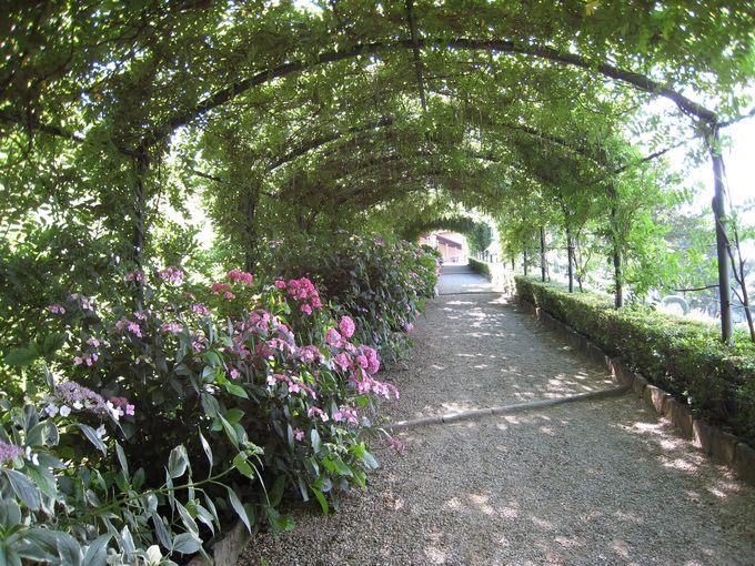 ボーボリ庭園のお隣、バルディーニ庭園