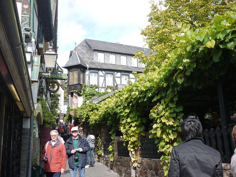 ワインの街!ドイツ・リューデスハイムを楽しむお薦めルート