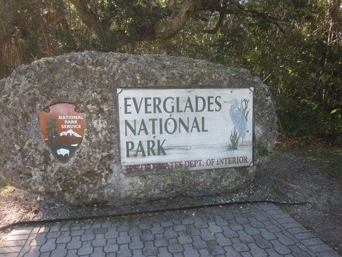 「エバーグレーズ国立公園」とは