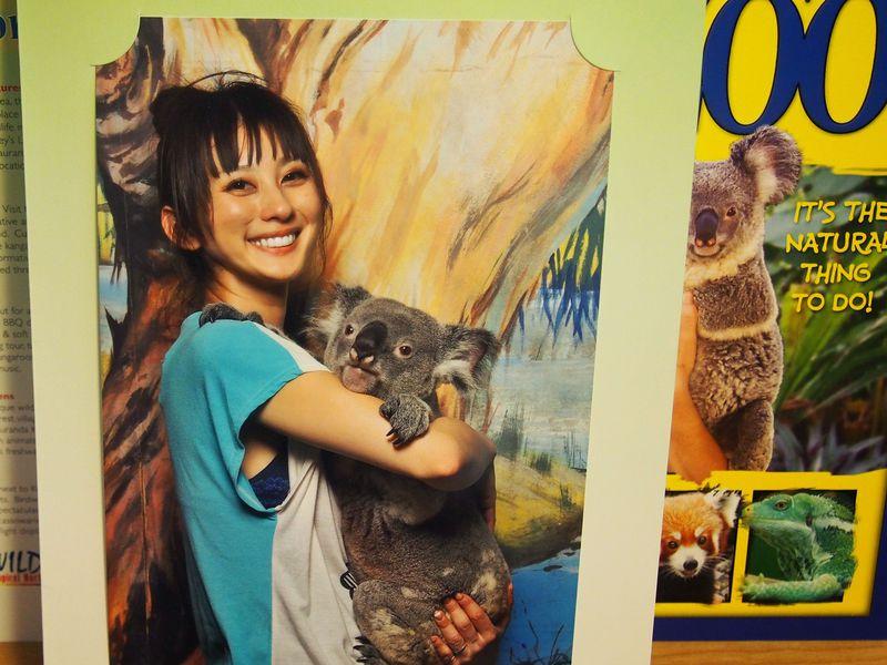 コアラもいるよ!檻に入れる動物園「ケアンズトロピカルズー」