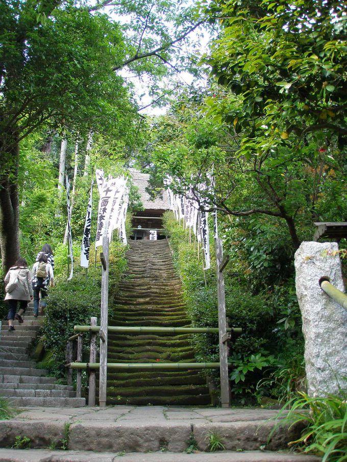 ◆杉本寺◆ 鎌倉最古の寺院 〜秘仏・三体の十一面観音の霊妙さに誰もが息をのむ