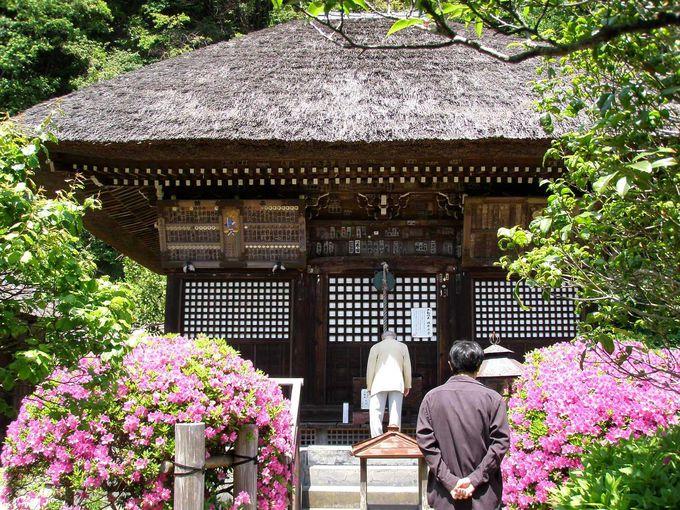 ◆明王院◆ 〜鎌倉幕府の鬼門を封じた強靭なパワースポット