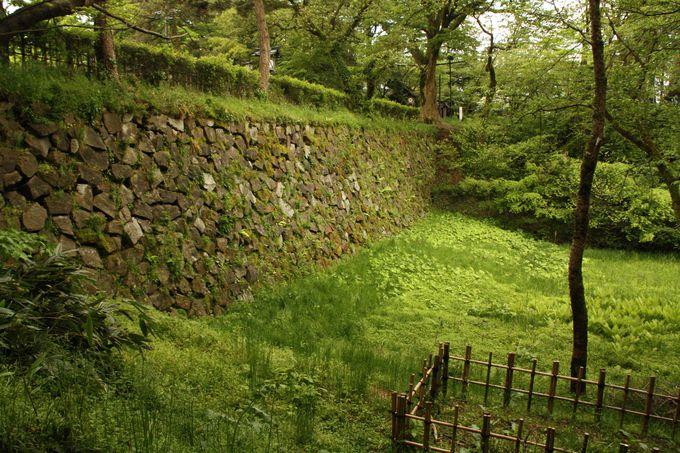 現存する苔むした石垣には古代ミステリーが?