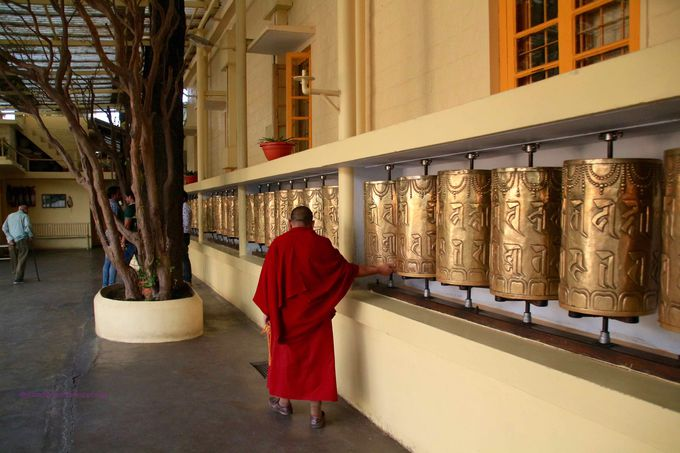 マクロードガンジまで足を伸ばしてチベットについて学ぼう!