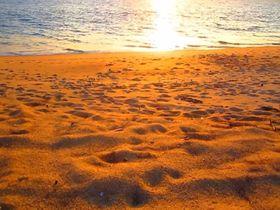タイでウミガメに会える?個性豊かなプーケット南国ビーチ6選