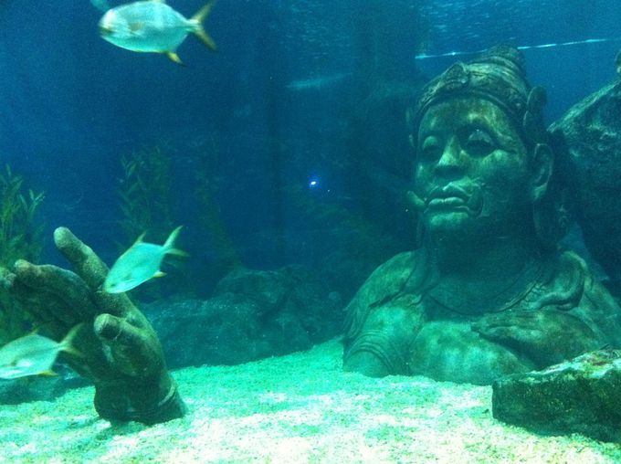 タイでしかお目にかかれない!?驚きの人魚伝説