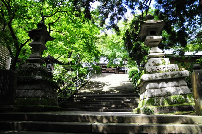 大雄山最乗寺、霊山の名にふさわしい自然環境