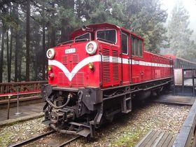 世界三大登山鉄道「阿里山森林鉄道」に乗って台湾最強パワースポット「阿里山」へ行こう