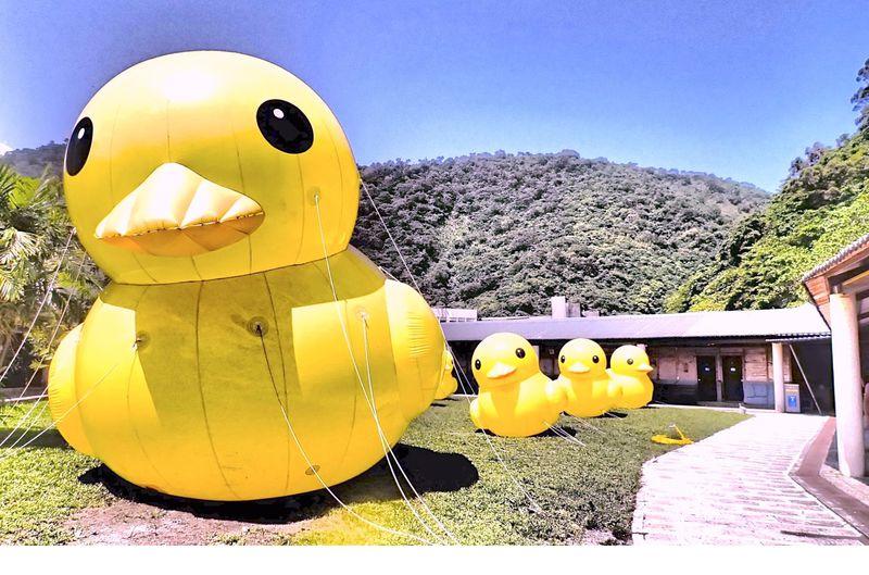 世界でも珍しい炭酸冷泉 台湾「蘇澳冷泉」で、シュワっとリフレッシュ!