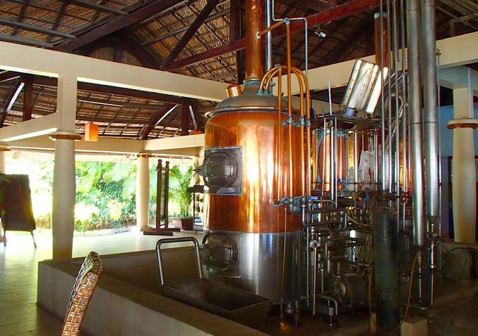 レストラン内に醸造施設。いつでも新鮮なクラフトビールが飲めます