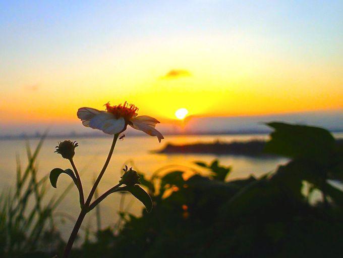 絶景!ダナンの街に沈む夕陽を眺めて