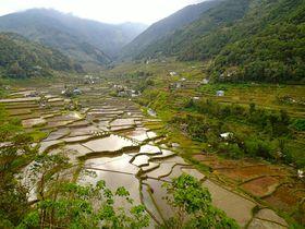 世界遺産フィリピン・コルディリェーラの棚田群と秘境温泉へ
