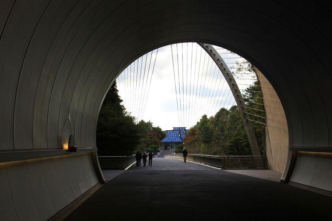 ミシュランで三ツ星を獲得した「MIHO MUSEUM」はアプローチが美しい山上の桃源郷