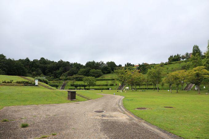 信楽焼をもっと深く知ることが出来る「陶芸の森」は親子連れでも楽しめる広大な公園