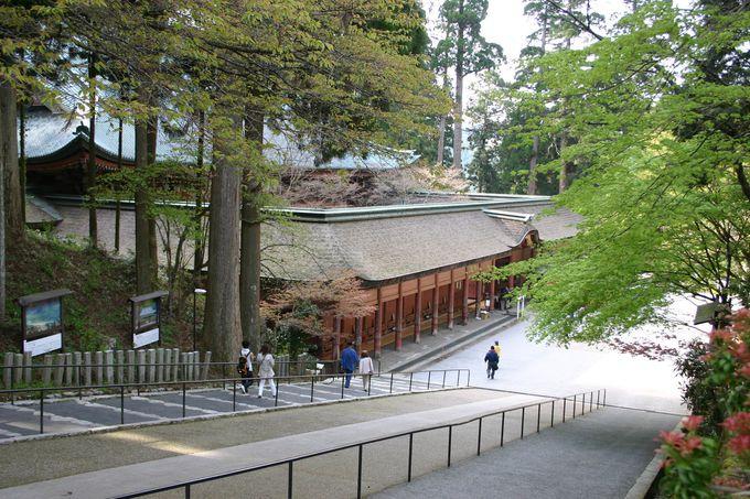 世界文化遺産に指定された「比叡山延暦寺」