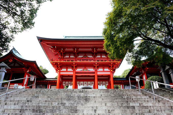 『ちはやふる』でお馴染み!かるたの殿堂「近江神宮」