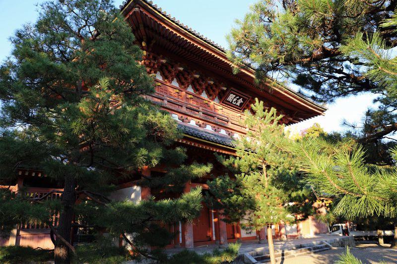 ここを知れば京都ツウ!大徳寺塔頭のひとつ「高桐院」