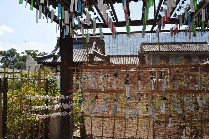 日本全国、各地にある様々な風鈴。こんなにたくさんの種類があるんですね。