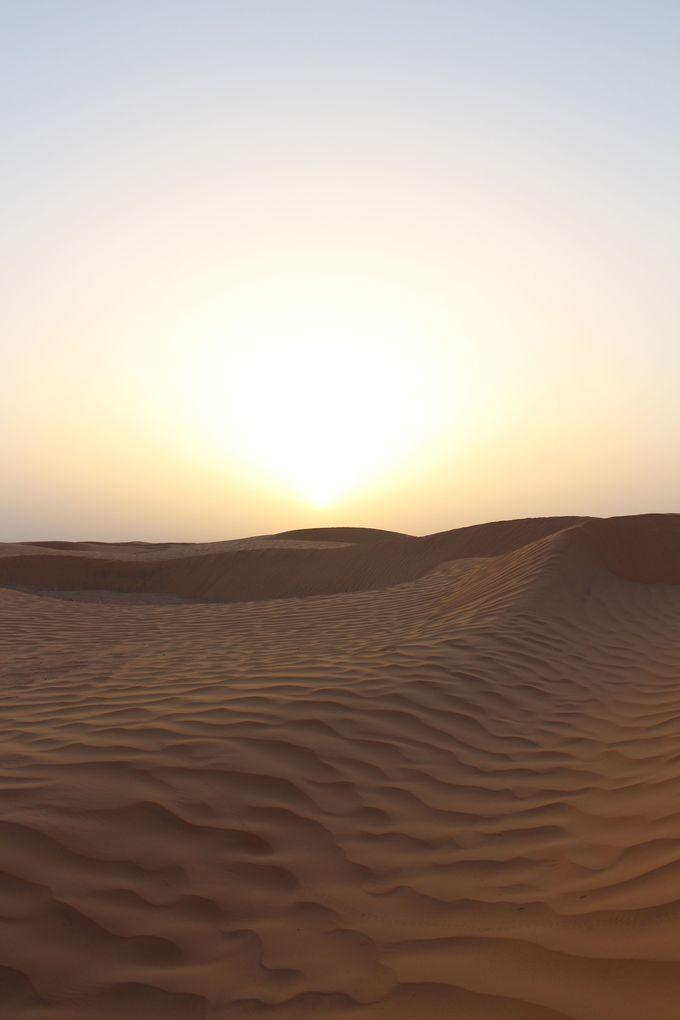 砂漠を心ゆくまで楽しめる、それが砂漠に泊まる最大の魅力。