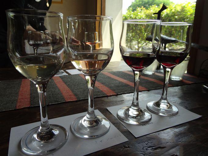 江戸期の土蔵で極上のワインをテイスティング