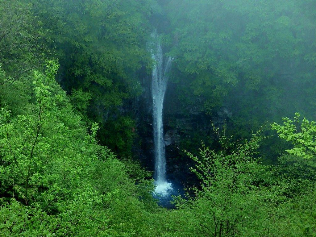 直漠の絶景!那須平成の森『駒止めの滝』