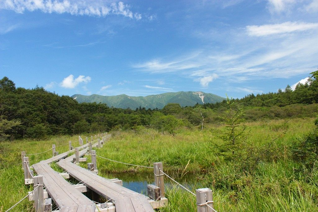 標高1230m那須の『沼っ原湿原』と絶景『深山ダム湖』
