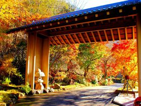 『星野リゾート 界 日光』は中禅寺湖畔に佇む安らぎの宿