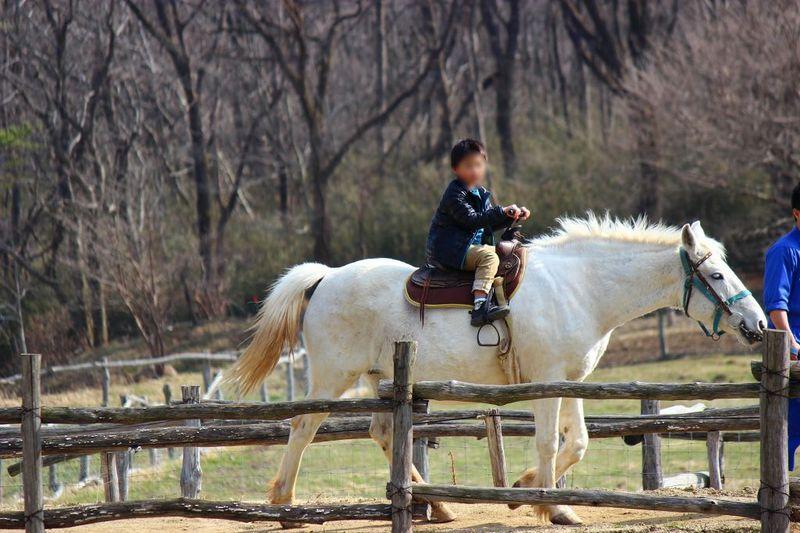 那須高原の「南ヶ丘牧場」でトコトン大自然を遊んじゃおう!