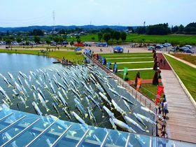 鮎のぼり?カピバラの潜水遊泳!?栃木県「なかがわ水遊園」が面白い|栃木県|トラベルjp<たびねす>